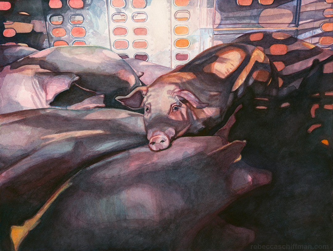 Rebecca Schiffman Vegan Watercolor Painting Pigs Outside Farmer John